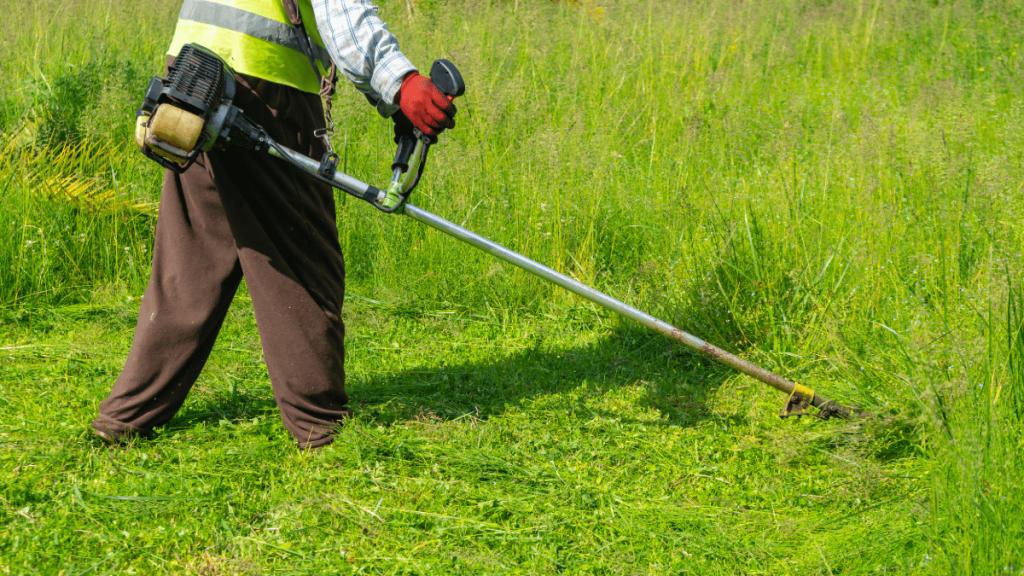 stihl-brushcutters-cutting-grass-min