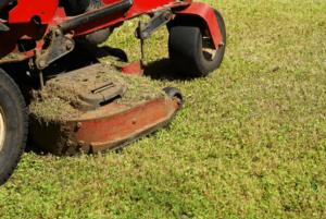 ride-on-mower-mulching-min