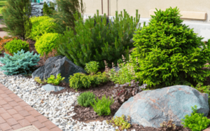 stihl-cape-town-landscaping-min