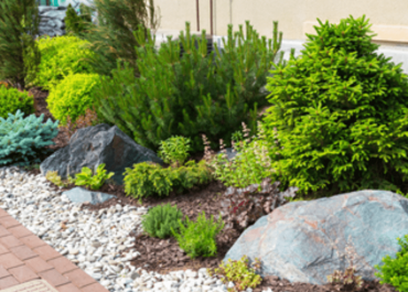 Stihl Cape Town and Your Start-up Landscaping Company