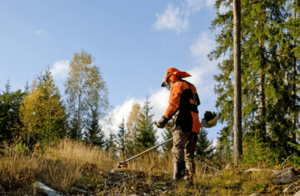 stihl-brushcutters-protective-equipment-min