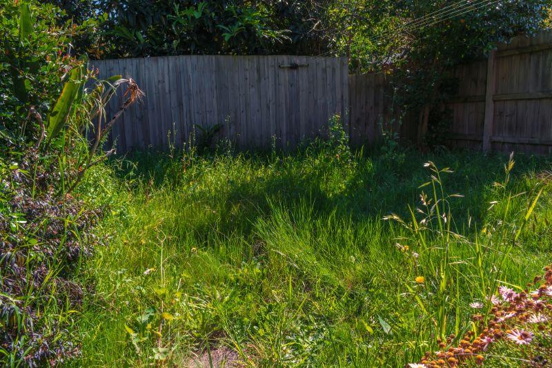 ride-on-mower-messy-garden-min
