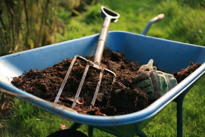 stihl-brushcutters-garden-fork-in-soil-min