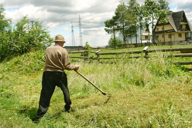 ride-on-mower-man-scythe-cutting-lawn-min